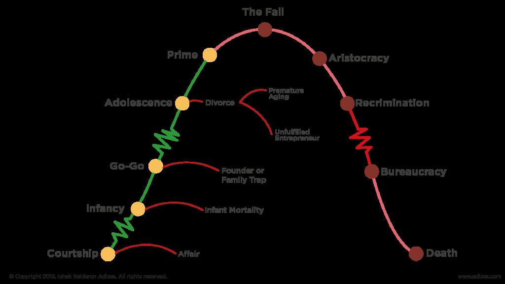 adizes lifecycle, organisational lifecycle