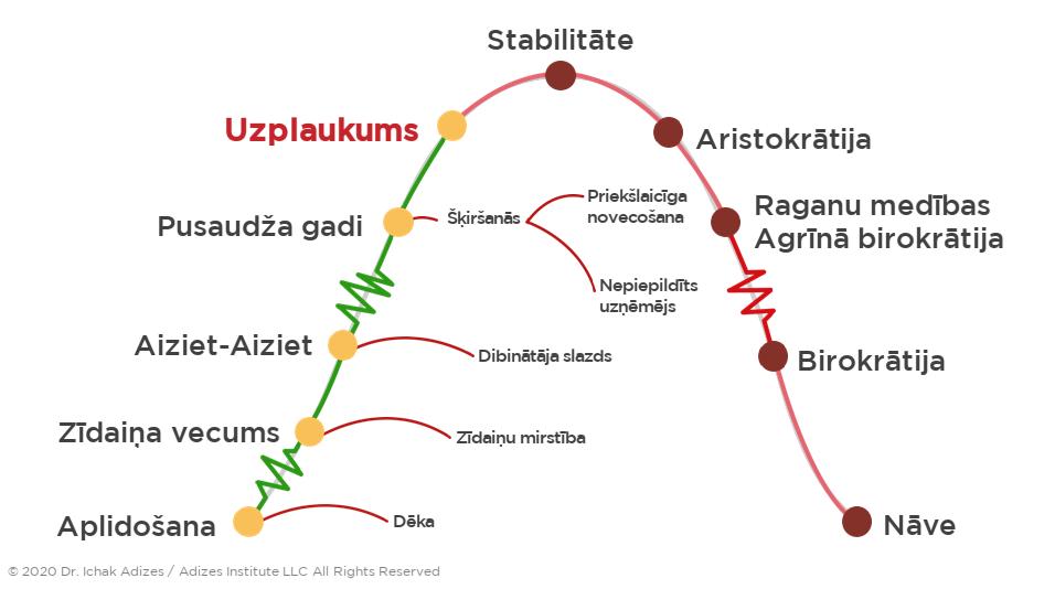 Adizes dzīvescikls, organizāciju dzīvescikls